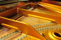 accordeur Alsace, accordeur Colmar, acordeur Strasbourg, accordeur de piano, accordage pianos, piano tuner